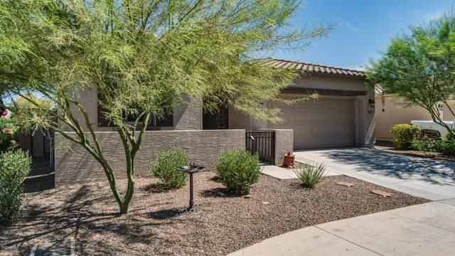 16848 W Woodlands Avenue, Goodyear, AZ 85338 (MLS #6094220) :: Nate Martinez Team
