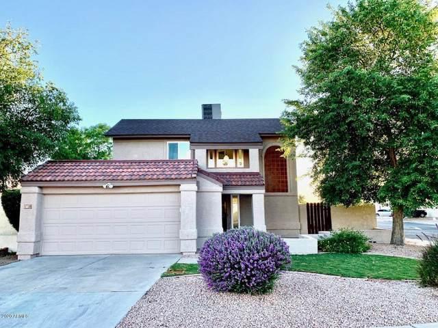 1528 N Apache Drive, Chandler, AZ 85224 (MLS #6094222) :: Lifestyle Partners Team
