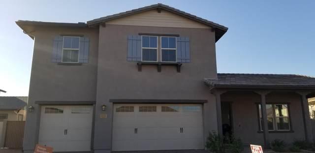3743 E Arabian Drive, Gilbert, AZ 85296 (MLS #6094227) :: Homehelper Consultants