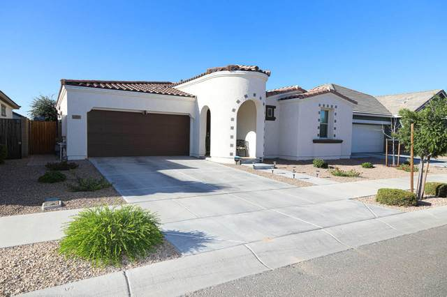 22506 E Desert Spoon Drive, Queen Creek, AZ 85142 (MLS #6094237) :: The Laughton Team
