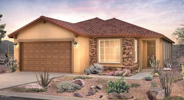 7100 W Andrea Drive, Peoria, AZ 85383 (MLS #6094241) :: Arizona Home Group