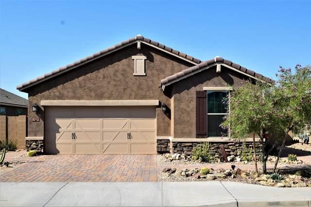 3019 W Laredo Lane, Phoenix, AZ 85085 (MLS #6094326) :: Russ Lyon Sotheby's International Realty