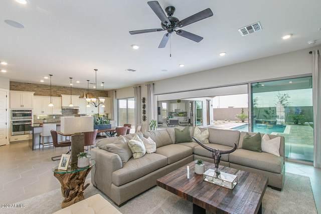 18369 W Sapium Way, Goodyear, AZ 85338 (MLS #6094334) :: Homehelper Consultants