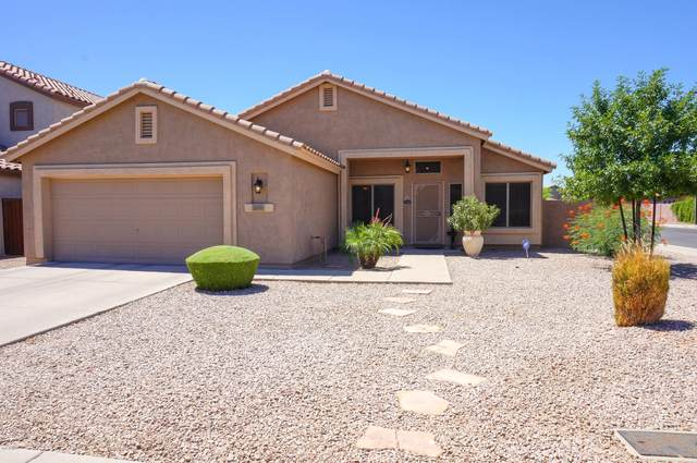 1105 E Sheffield Avenue, Gilbert, AZ 85296 (MLS #6094401) :: Homehelper Consultants