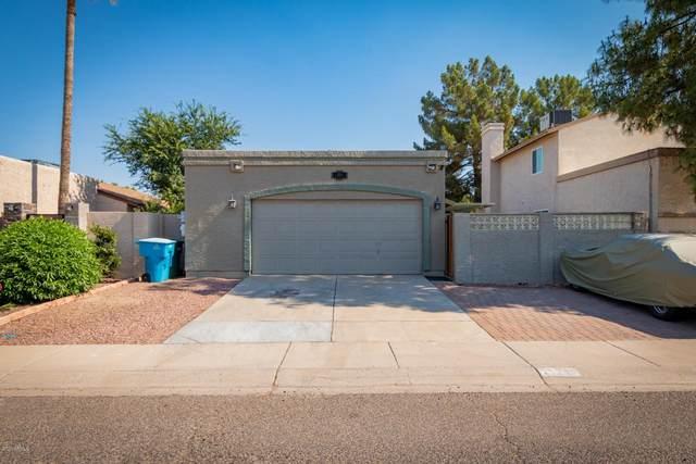 924 E Escuda Drive, Phoenix, AZ 85024 (MLS #6094490) :: Nate Martinez Team