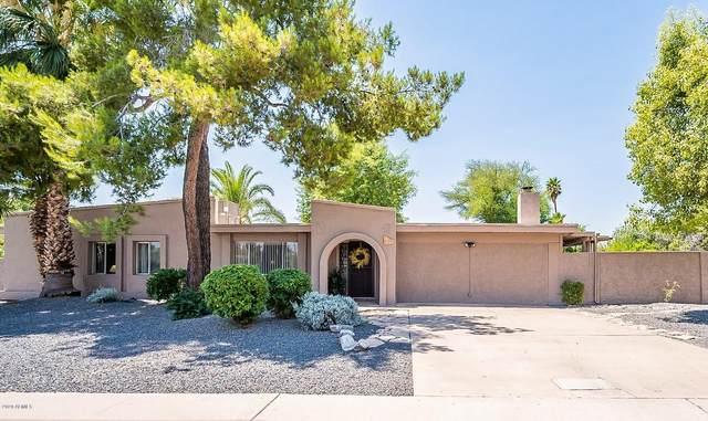 5105 E Cactus Road, Scottsdale, AZ 85254 (MLS #6094504) :: Nate Martinez Team