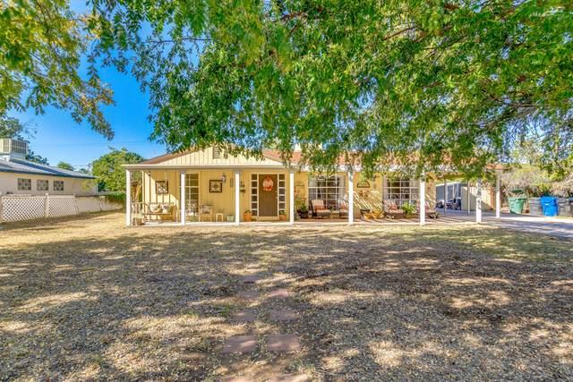 254 N Fraser Drive E, Mesa, AZ 85203 (MLS #6094545) :: Yost Realty Group at RE/MAX Casa Grande