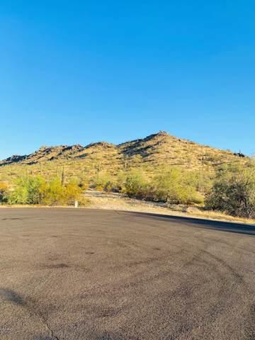 16681 W Santa Maria Drive, Goodyear, AZ 85338 (MLS #6094565) :: The Garcia Group