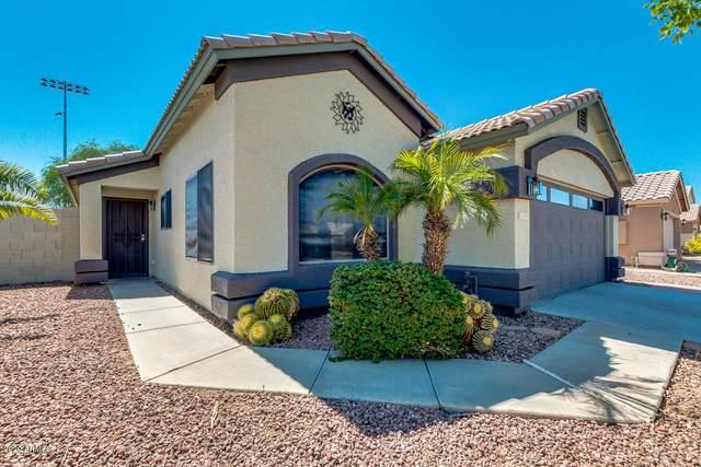 2444 N 114TH Lane, Avondale, AZ 85392 (MLS #6094582) :: Brett Tanner Home Selling Team