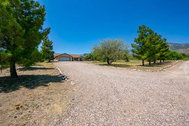 5460 E Calle Coyote, Hereford, AZ 85615 (MLS #6094606) :: Dave Fernandez Team | HomeSmart