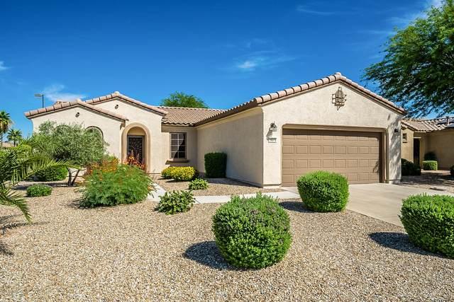 16372 W Kearney Lane, Surprise, AZ 85387 (MLS #6094678) :: Brett Tanner Home Selling Team