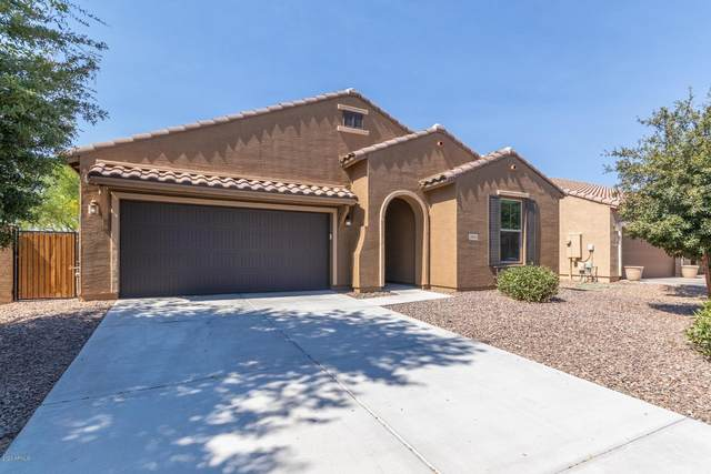 2856 E Meadowview Drive, Gilbert, AZ 85298 (MLS #6094687) :: BIG Helper Realty Group at EXP Realty