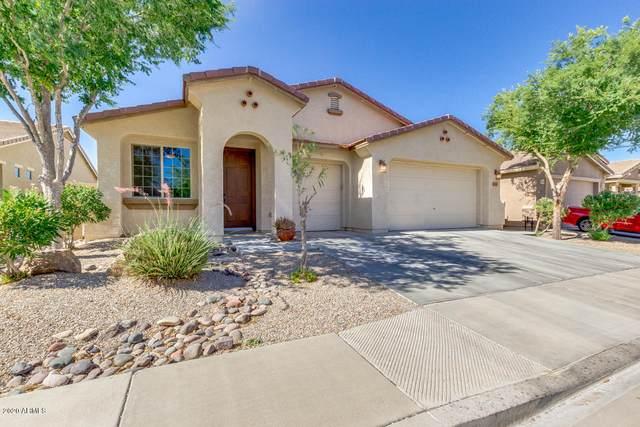 648 E Navajo Trail, San Tan Valley, AZ 85143 (MLS #6094688) :: Klaus Team Real Estate Solutions