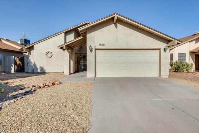 18811 N 43RD Drive, Glendale, AZ 85308 (MLS #6094692) :: Homehelper Consultants