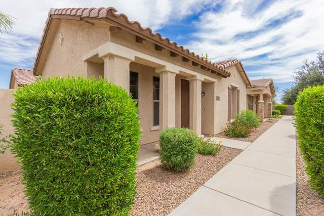 3500 S Jacana Lane, Gilbert, AZ 85297 (MLS #6094750) :: My Home Group