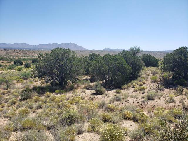 0000 S Maverick Road S, Kingman, AZ 86401 (MLS #6094760) :: Long Realty West Valley