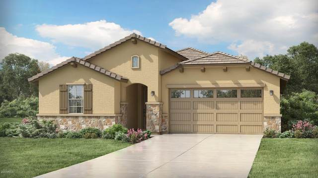 19663 W Valle Vista Way, Litchfield Park, AZ 85340 (MLS #6094794) :: The Laughton Team