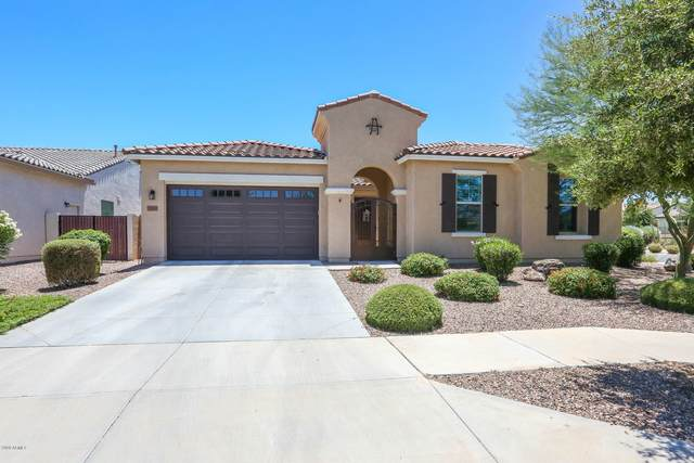 19503 E Strawberry Drive, Queen Creek, AZ 85142 (MLS #6094874) :: My Home Group