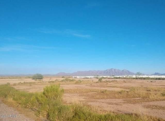 000 E Haddan Court, Eloy, AZ 85131 (MLS #6094924) :: REMAX Professionals