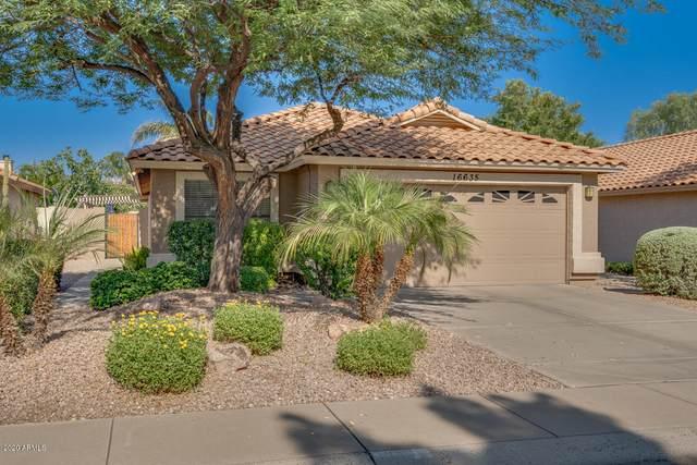 16635 N 59TH Street, Scottsdale, AZ 85254 (MLS #6094973) :: Kepple Real Estate Group