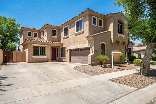 4196 E Marshall Avenue, Gilbert, AZ 85297 (MLS #6095059) :: Dave Fernandez Team   HomeSmart