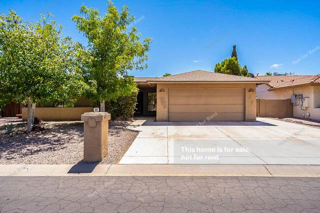 26033 S Hollygreen Drive, Sun Lakes, AZ 85248 (MLS #6095181) :: Brett Tanner Home Selling Team