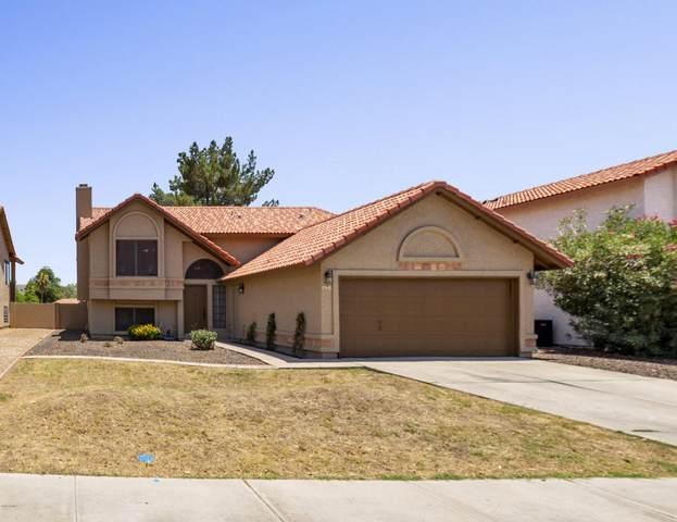 635 N Elm Street, Chandler, AZ 85226 (MLS #6095215) :: Lucido Agency