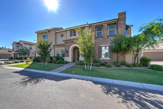1960 W Yellowstone Way, Chandler, AZ 85248 (MLS #6095225) :: Conway Real Estate