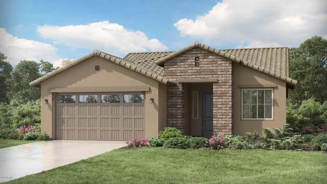 19607 W Valle Vista Way, Litchfield Park, AZ 85340 (MLS #6095230) :: The Laughton Team