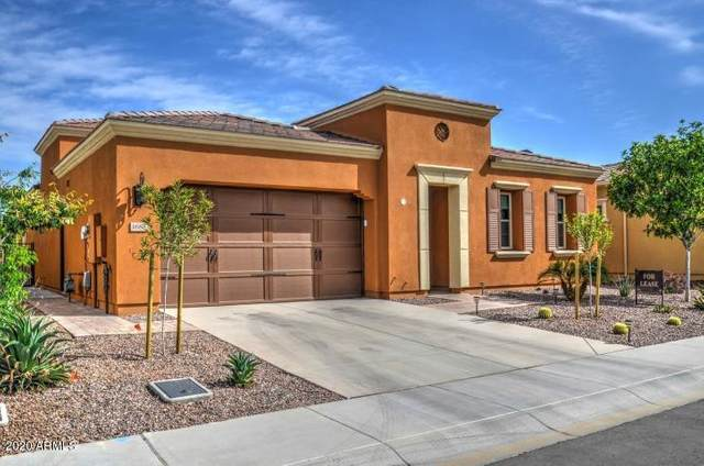 1688 E Maygrass Lane, San Tan Valley, AZ 85140 (MLS #6095261) :: Lux Home Group at  Keller Williams Realty Phoenix