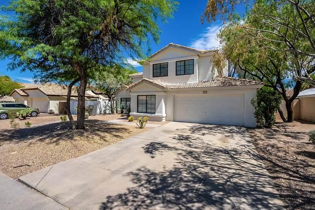 6460 E Palm Street, Mesa, AZ 85215 (MLS #6095330) :: Yost Realty Group at RE/MAX Casa Grande