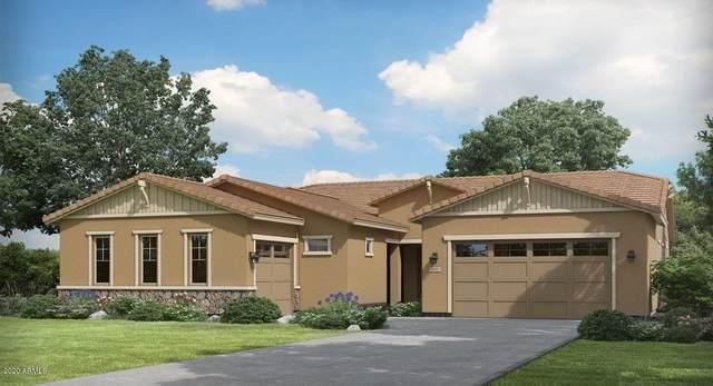 22370 E Pickett Court, Queen Creek, AZ 85142 (MLS #6095339) :: The Laughton Team