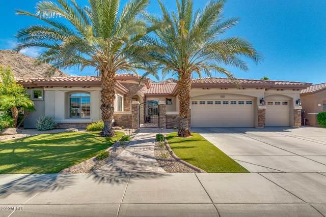 2810 W Wildwood Drive, Phoenix, AZ 85045 (MLS #6095348) :: Yost Realty Group at RE/MAX Casa Grande