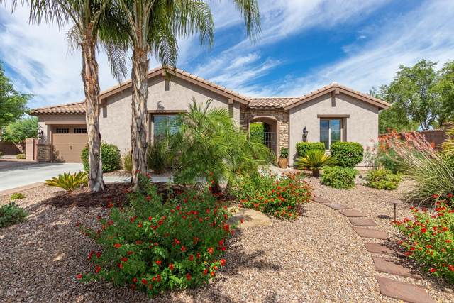 4310 S Pleasant Court, Chandler, AZ 85248 (MLS #6095375) :: Scott Gaertner Group