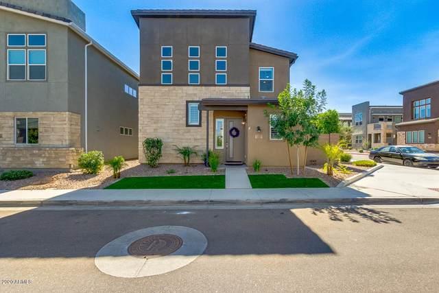 1372 N Zane Drive, Chandler, AZ 85226 (MLS #6095390) :: The Garcia Group