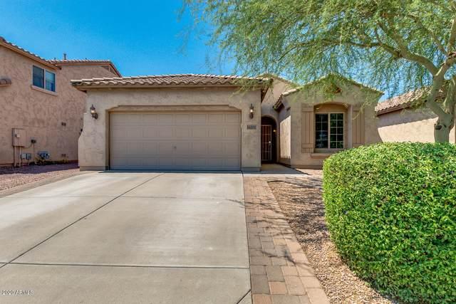 11154 E Sutter Circle, Mesa, AZ 85212 (MLS #6095424) :: The Laughton Team