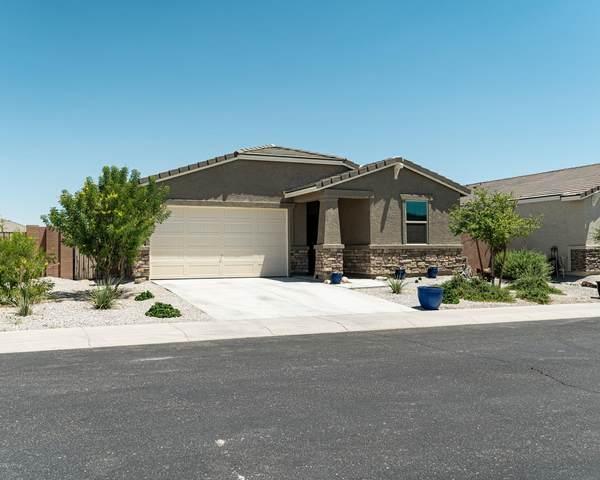 2111 S 238TH Avenue, Buckeye, AZ 85326 (MLS #6095491) :: Conway Real Estate