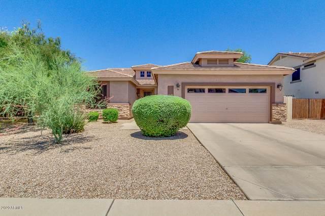 4226 E Loma Vista Street, Gilbert, AZ 85295 (MLS #6095495) :: Conway Real Estate