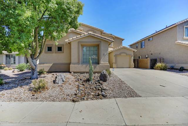 16548 W Saguaro Lane, Surprise, AZ 85388 (MLS #6095518) :: Yost Realty Group at RE/MAX Casa Grande