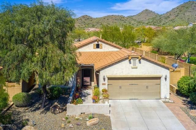 1824 W Black Hill Road, Phoenix, AZ 85085 (MLS #6095530) :: Scott Gaertner Group