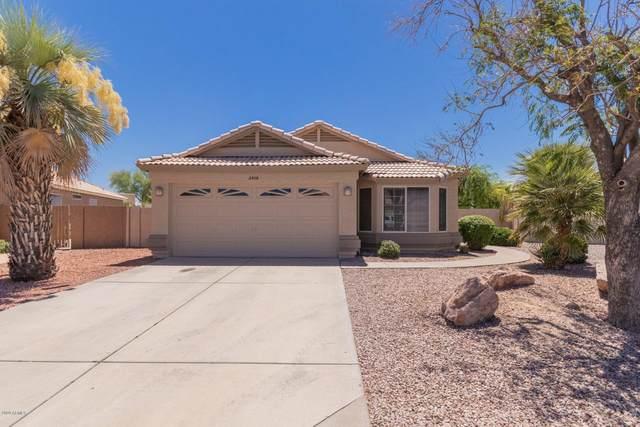 2506 N Sunaire, Mesa, AZ 85215 (MLS #6095542) :: Yost Realty Group at RE/MAX Casa Grande