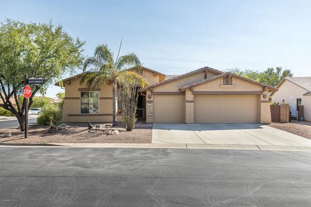 8256 S Bluff Springs Court, Gold Canyon, AZ 85118 (MLS #6095555) :: Klaus Team Real Estate Solutions