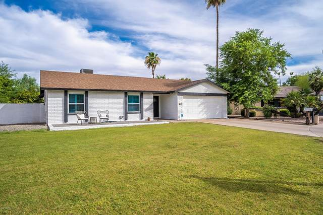 6109 E Spring Road, Scottsdale, AZ 85254 (MLS #6095556) :: My Home Group