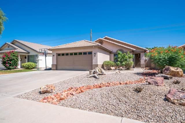 164 W Shannon Street, Gilbert, AZ 85233 (MLS #6095577) :: Homehelper Consultants