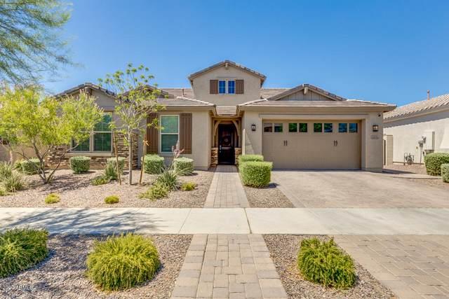 10624 E Sheffield Drive, Mesa, AZ 85212 (MLS #6095590) :: Arizona Home Group