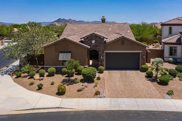 5338 E Barwick Drive, Cave Creek, AZ 85331 (MLS #6095626) :: The Property Partners at eXp Realty