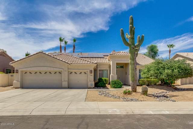 13622 W Edgemont Avenue, Goodyear, AZ 85395 (MLS #6095703) :: Brett Tanner Home Selling Team