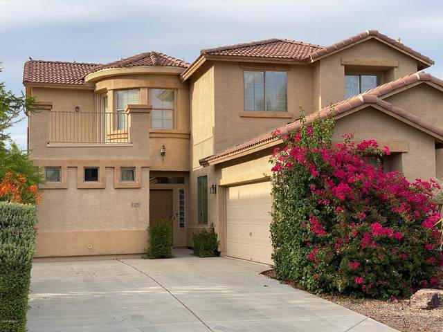 43294 W Rio Bravo Drive, Maricopa, AZ 85138 (MLS #6095715) :: Scott Gaertner Group
