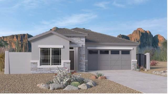 8833 S 165TH Avenue, Goodyear, AZ 85338 (MLS #6095779) :: The Garcia Group
