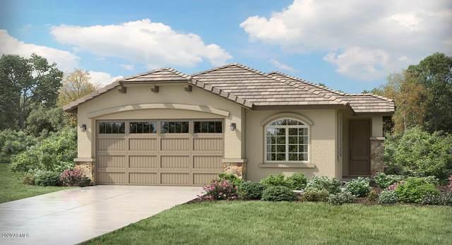 11781 N 187TH Drive, Surprise, AZ 85388 (MLS #6095865) :: Klaus Team Real Estate Solutions